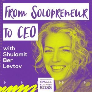 Solopreneur to CEO